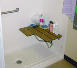 A view of the shower with handrail and seat.